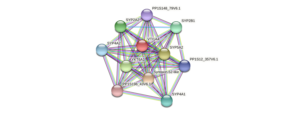 VTI1A4 protein (Physcomitrella patens) - STRING interaction network