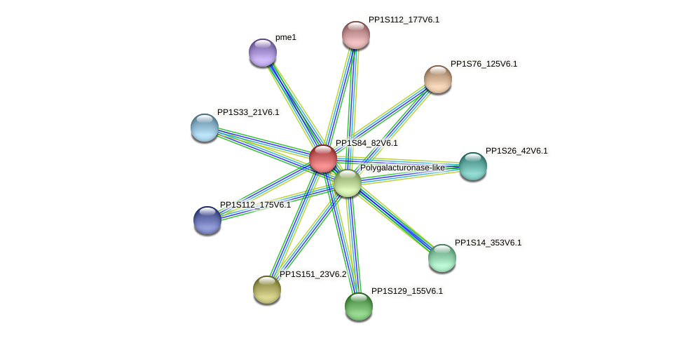 PP1S84_82V6.1 protein (Physcomitrella patens) - STRING interaction network