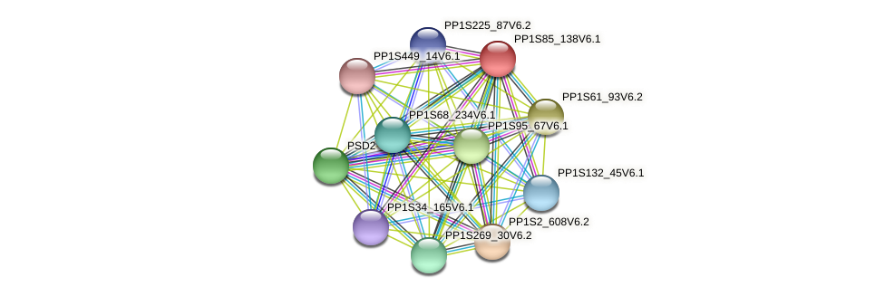 PP1S85_138V6.1 protein (Physcomitrella patens) - STRING interaction network