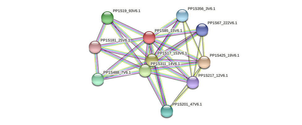 PP1S85_15V6.1 protein (Physcomitrella patens) - STRING interaction network