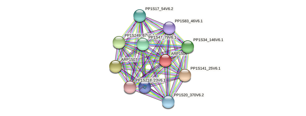ARP1506 protein (Physcomitrella patens) - STRING interaction network