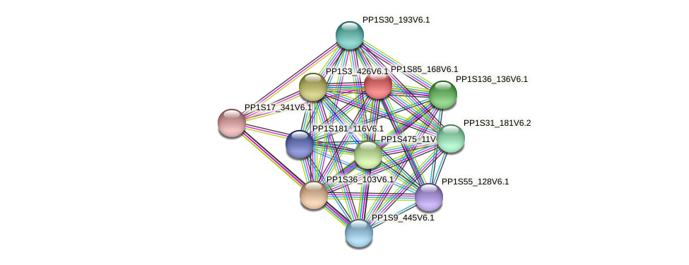 PP1S85_168V6.1 protein (Physcomitrella patens) - STRING interaction network