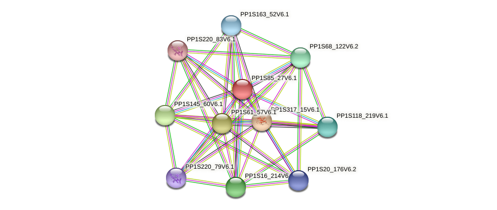 PP1S85_27V6.1 protein (Physcomitrella patens) - STRING interaction network