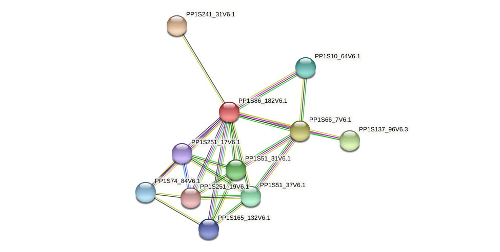 PP1S86_182V6.1 protein (Physcomitrella patens) - STRING interaction network