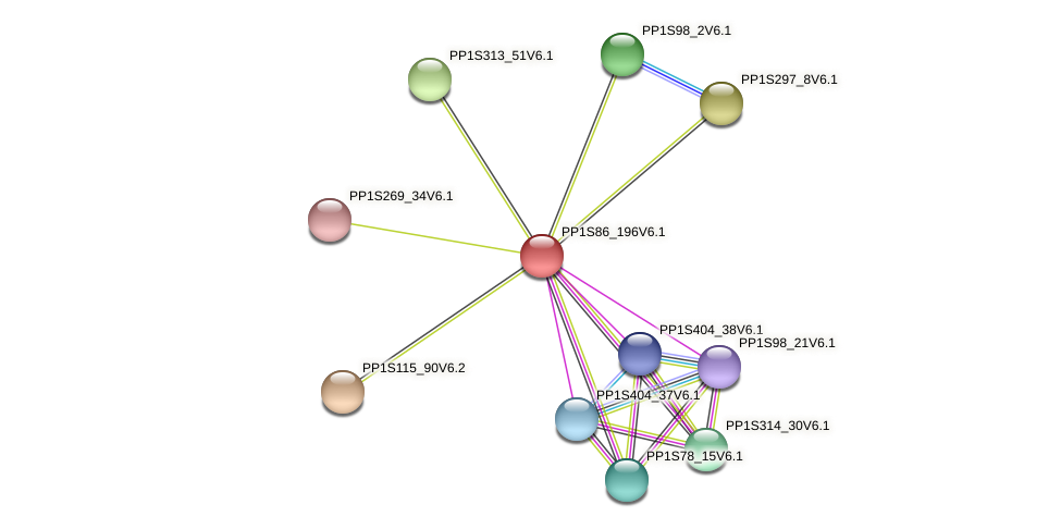 PP1S86_196V6.1 protein (Physcomitrella patens) - STRING interaction network