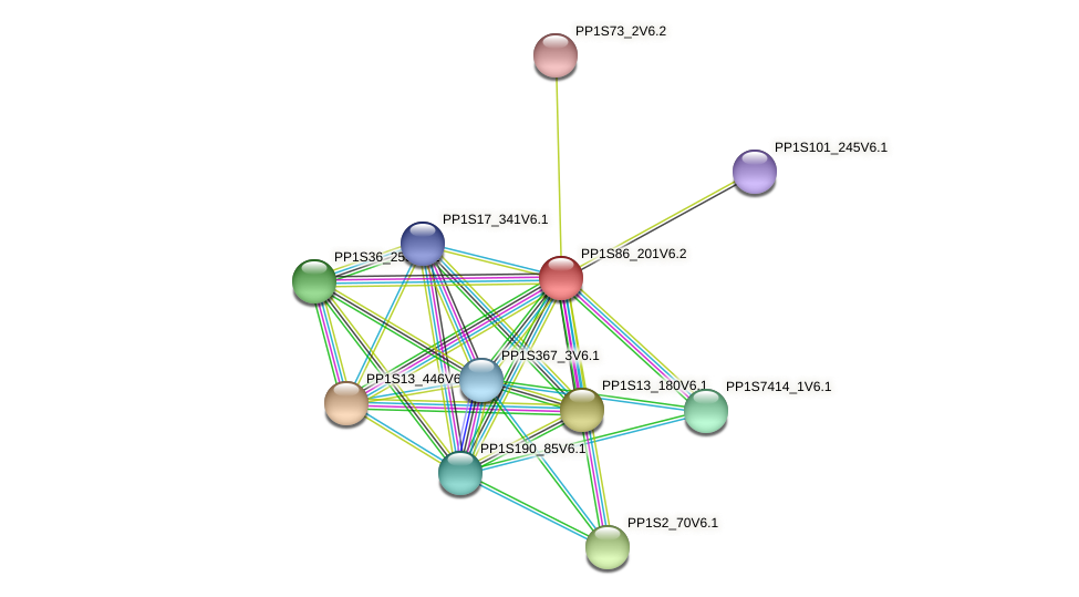 PP1S86_201V6.2 protein (Physcomitrella patens) - STRING interaction network