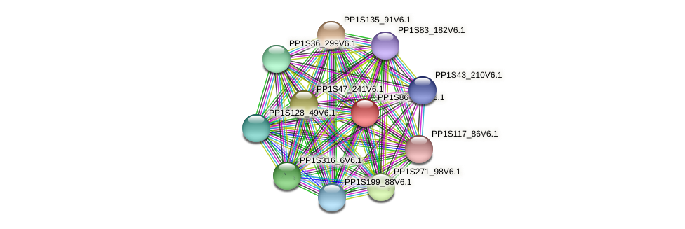 PP1S86_206V6.1 protein (Physcomitrella patens) - STRING interaction network