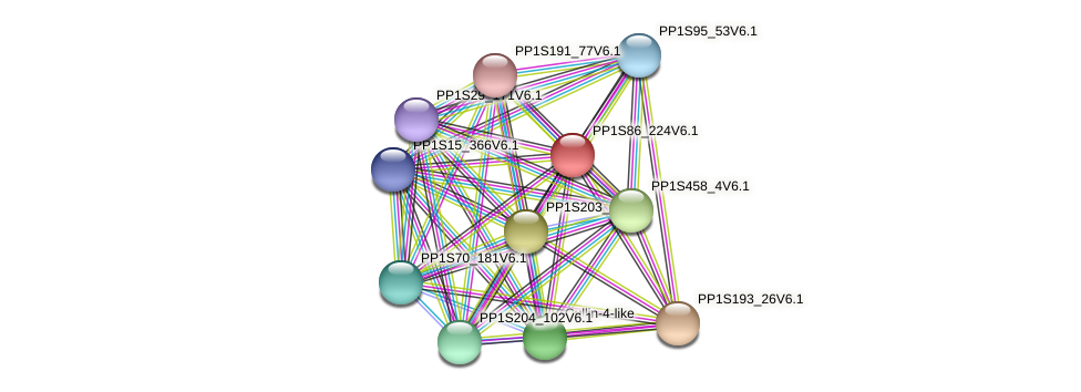 PP1S86_224V6.1 protein (Physcomitrella patens) - STRING interaction network