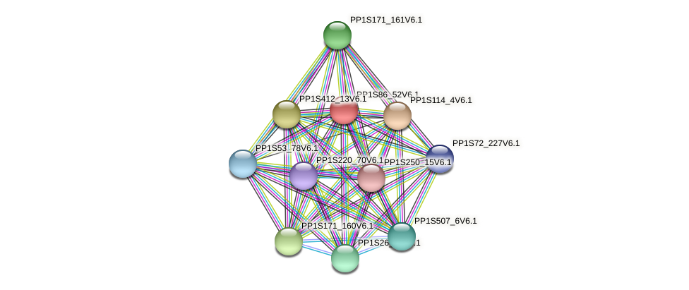 PP1S86_52V6.1 protein (Physcomitrella patens) - STRING interaction network
