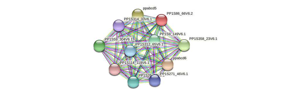 PP1S86_66V6.1 protein (Physcomitrella patens) - STRING interaction network