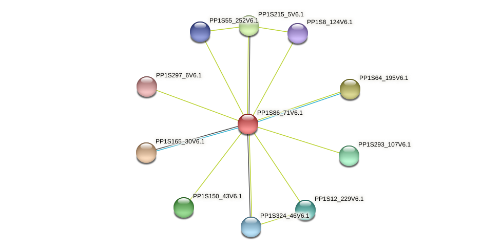 PP1S86_71V6.1 protein (Physcomitrella patens) - STRING interaction network