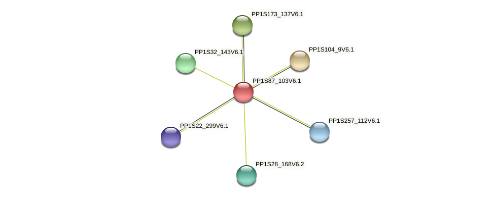 PP1S87_103V6.1 protein (Physcomitrella patens) - STRING interaction network