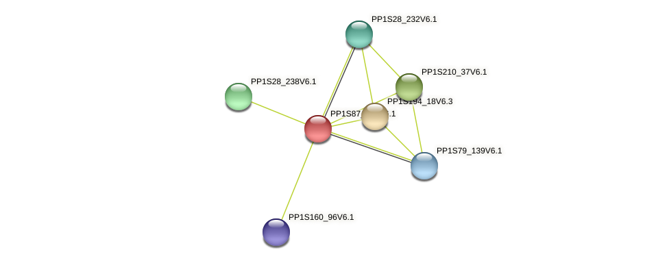 PP1S87_107V6.1 protein (Physcomitrella patens) - STRING interaction network