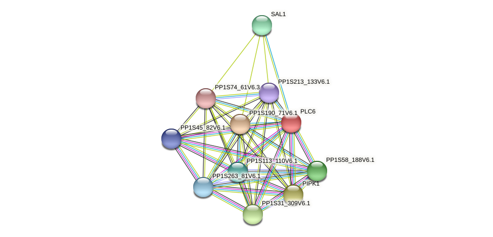 PLC6 protein (Physcomitrella patens) - STRING interaction network