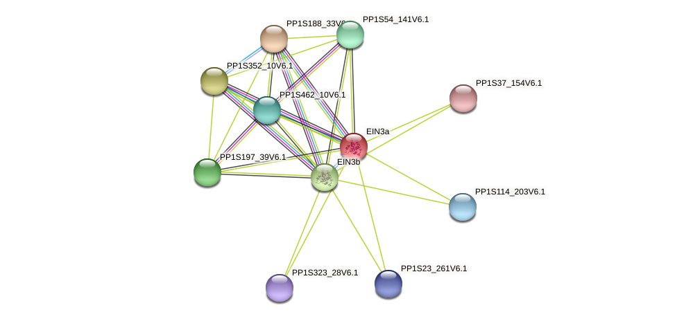 PP1S87_38V6.1 protein (Physcomitrella patens) - STRING interaction network