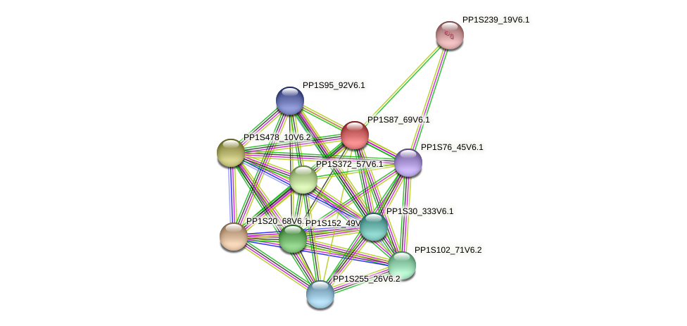 PP1S87_69V6.1 protein (Physcomitrella patens) - STRING interaction network