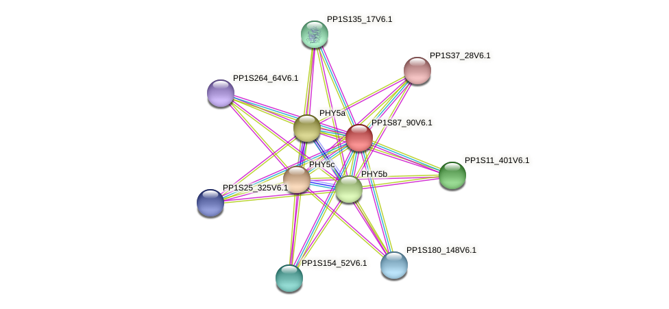 PP1S87_90V6.1 protein (Physcomitrella patens) - STRING interaction network