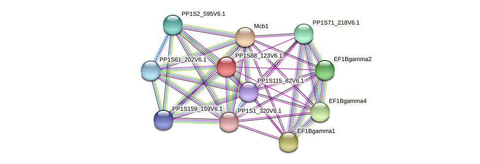 PP1S88_123V6.1 protein (Physcomitrella patens) - STRING interaction network