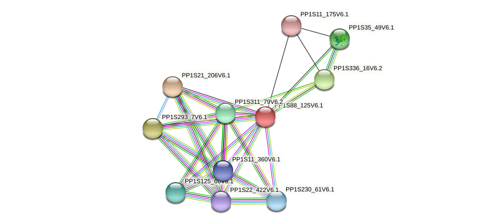 PP1S88_125V6.1 protein (Physcomitrella patens) - STRING interaction network