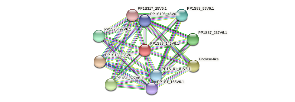PP1S88_145V6.1 protein (Physcomitrella patens) - STRING interaction network