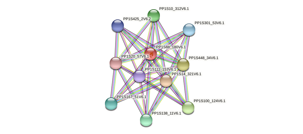 PP1S88_180V6.1 protein (Physcomitrella patens) - STRING interaction network