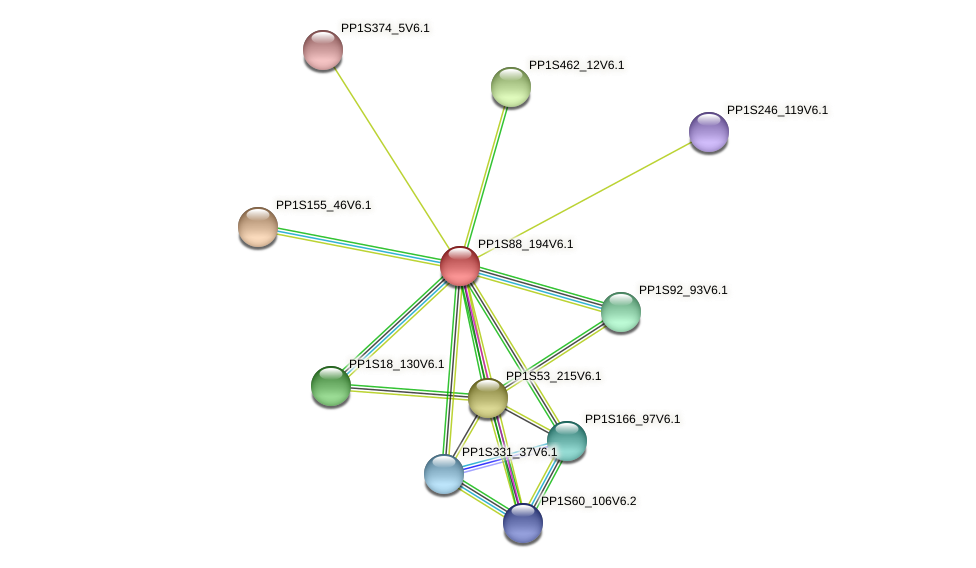 PP1S88_194V6.1 protein (Physcomitrella patens) - STRING interaction network