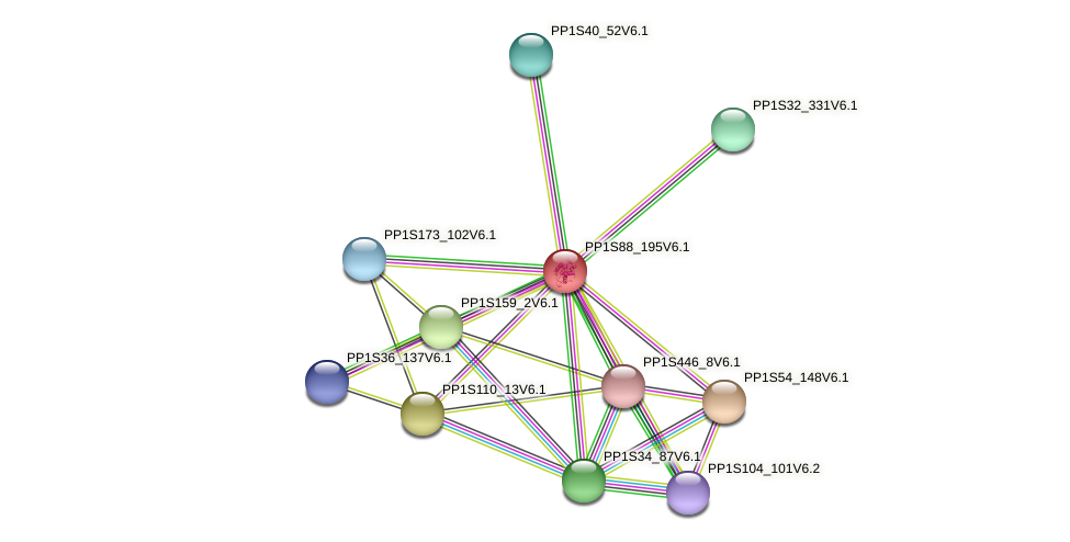 PP1S88_195V6.1 protein (Physcomitrella patens) - STRING interaction network