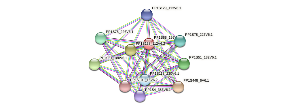 PP1S88_199V6.1 protein (Physcomitrella patens) - STRING interaction network