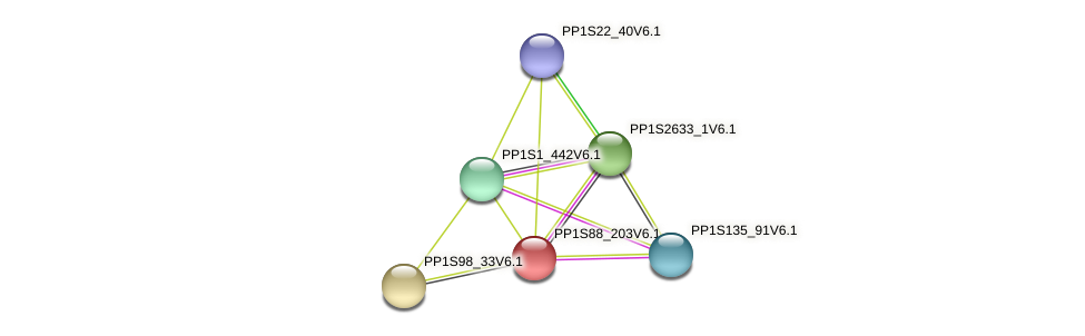 PP1S88_203V6.1 protein (Physcomitrella patens) - STRING interaction network