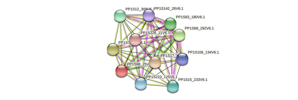 PP1S88_25V6.1 protein (Physcomitrella patens) - STRING interaction network
