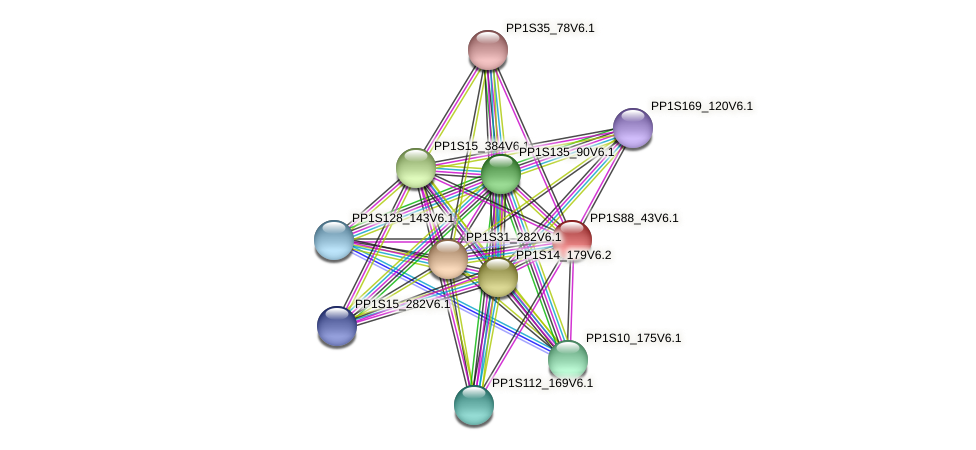 PP1S88_43V6.1 protein (Physcomitrella patens) - STRING interaction network