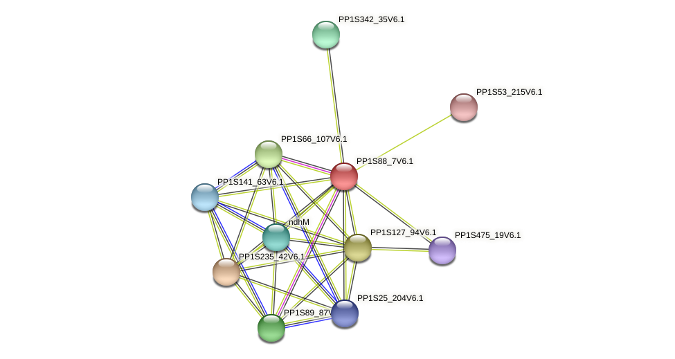 PP1S88_7V6.1 protein (Physcomitrella patens) - STRING interaction network