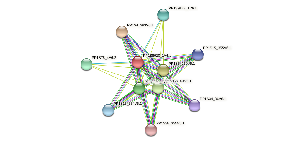 PP1S8920_1V6.1 protein (Physcomitrella patens) - STRING interaction network