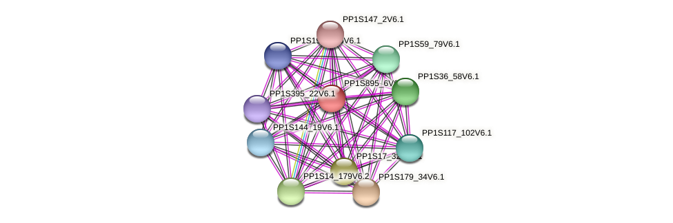 PP1S895_6V6.1 protein (Physcomitrella patens) - STRING interaction network
