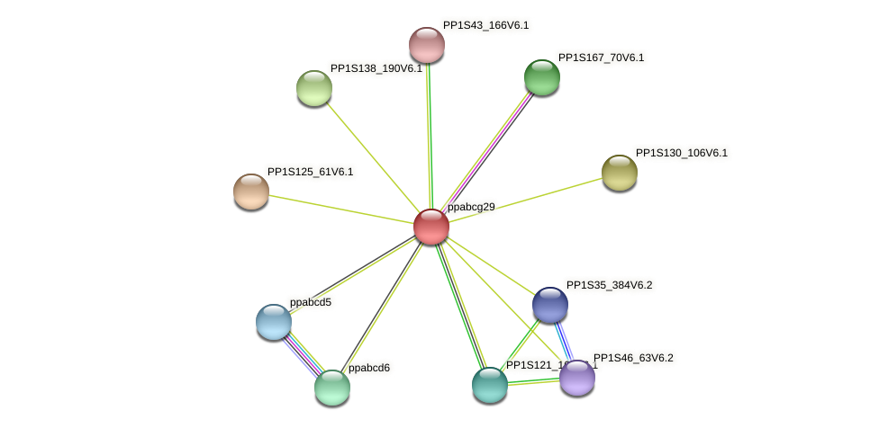 ppabcg29 protein (Physcomitrella patens) - STRING interaction network