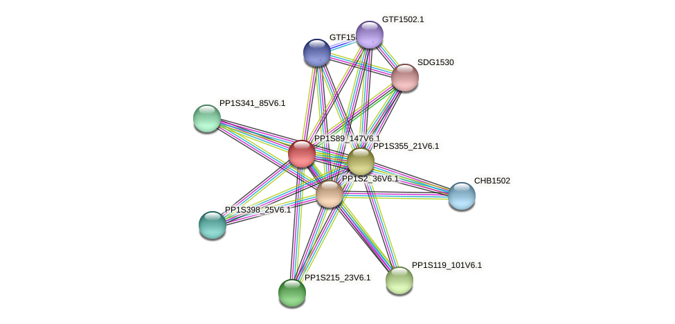 PP1S89_147V6.1 protein (Physcomitrella patens) - STRING interaction network