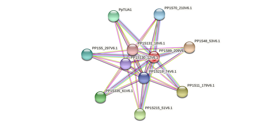 PP1S89_209V6.1 protein (Physcomitrella patens) - STRING interaction network