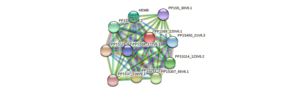 PP1S89_220V6.1 protein (Physcomitrella patens) - STRING interaction network