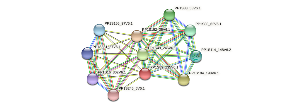 PP1S89_235V6.1 protein (Physcomitrella patens) - STRING interaction network