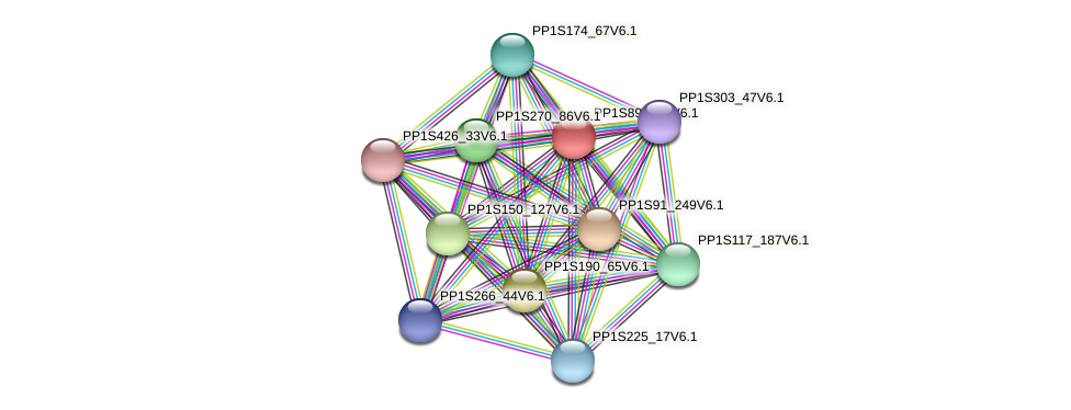 PP1S89_268V6.1 protein (Physcomitrella patens) - STRING interaction network