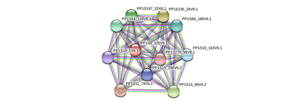 PP1S8_105V6.1 protein (Physcomitrella patens) - STRING interaction network