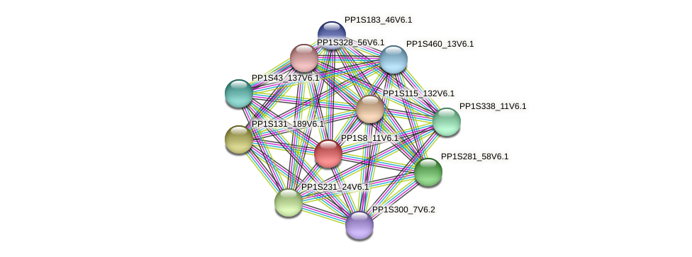PP1S8_11V6.1 protein (Physcomitrella patens) - STRING interaction network
