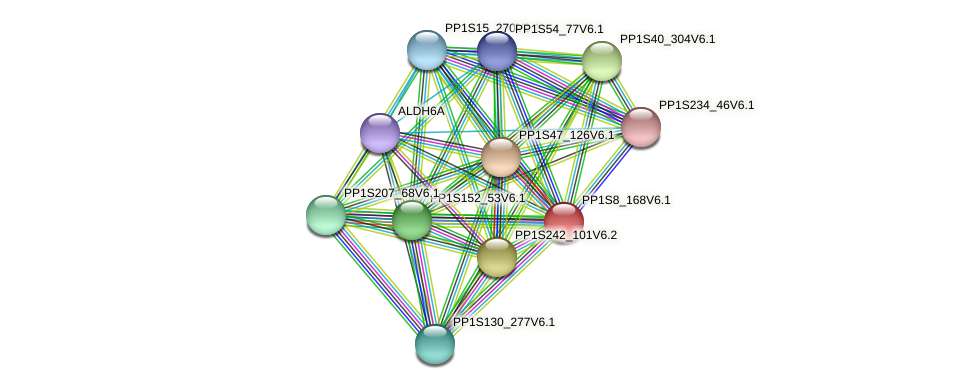 PP1S8_168V6.1 protein (Physcomitrella patens) - STRING interaction network
