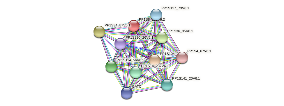 PP1S8_180V6.2 protein (Physcomitrella patens) - STRING interaction network