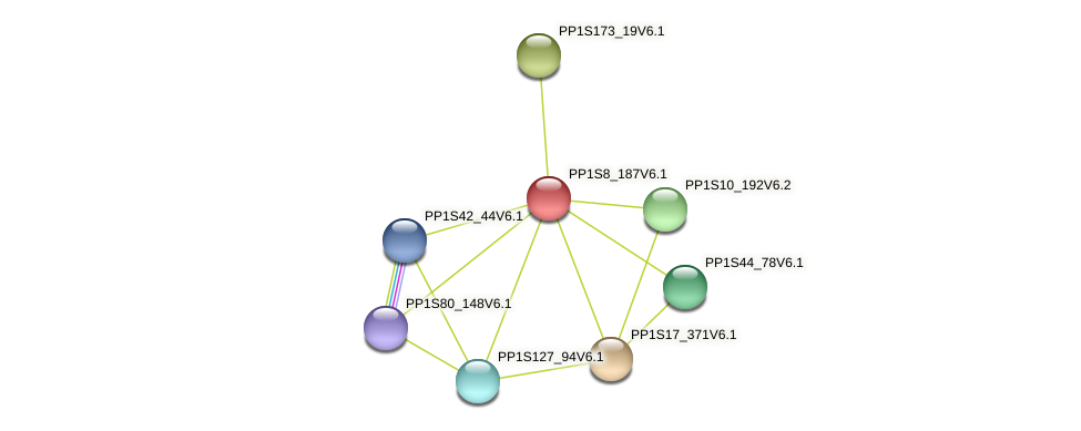 PP1S8_187V6.1 protein (Physcomitrella patens) - STRING interaction network