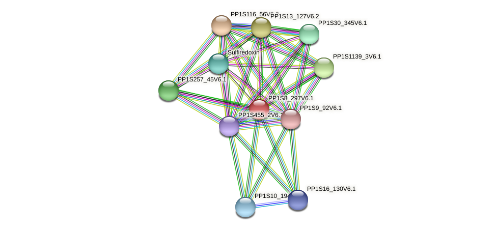 PP1S8_297V6.1 protein (Physcomitrella patens) - STRING interaction network