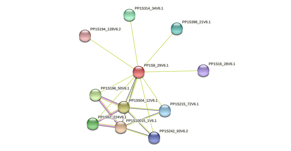 PP1S8_29V6.1 protein (Physcomitrella patens) - STRING interaction network