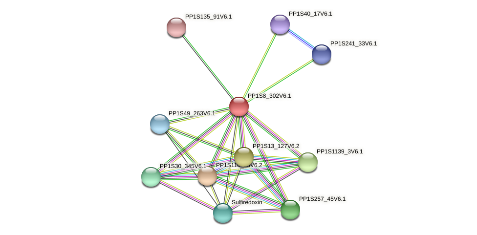 PP1S8_302V6.1 protein (Physcomitrella patens) - STRING interaction network