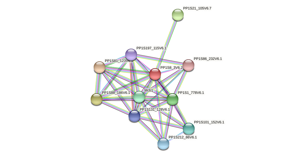 PP1S8_3V6.2 protein (Physcomitrella patens) - STRING interaction network