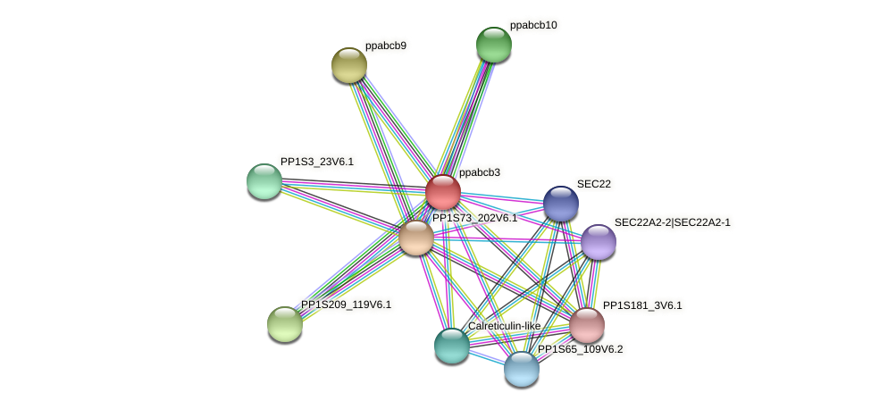 ppabcb3 protein (Physcomitrella patens) - STRING interaction network